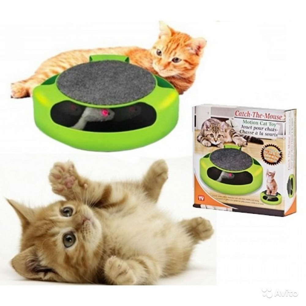 Cats toy catch mouse