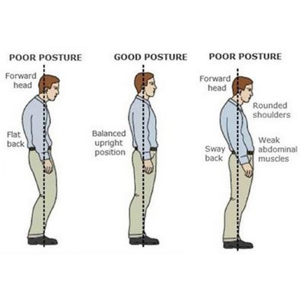 Posture support