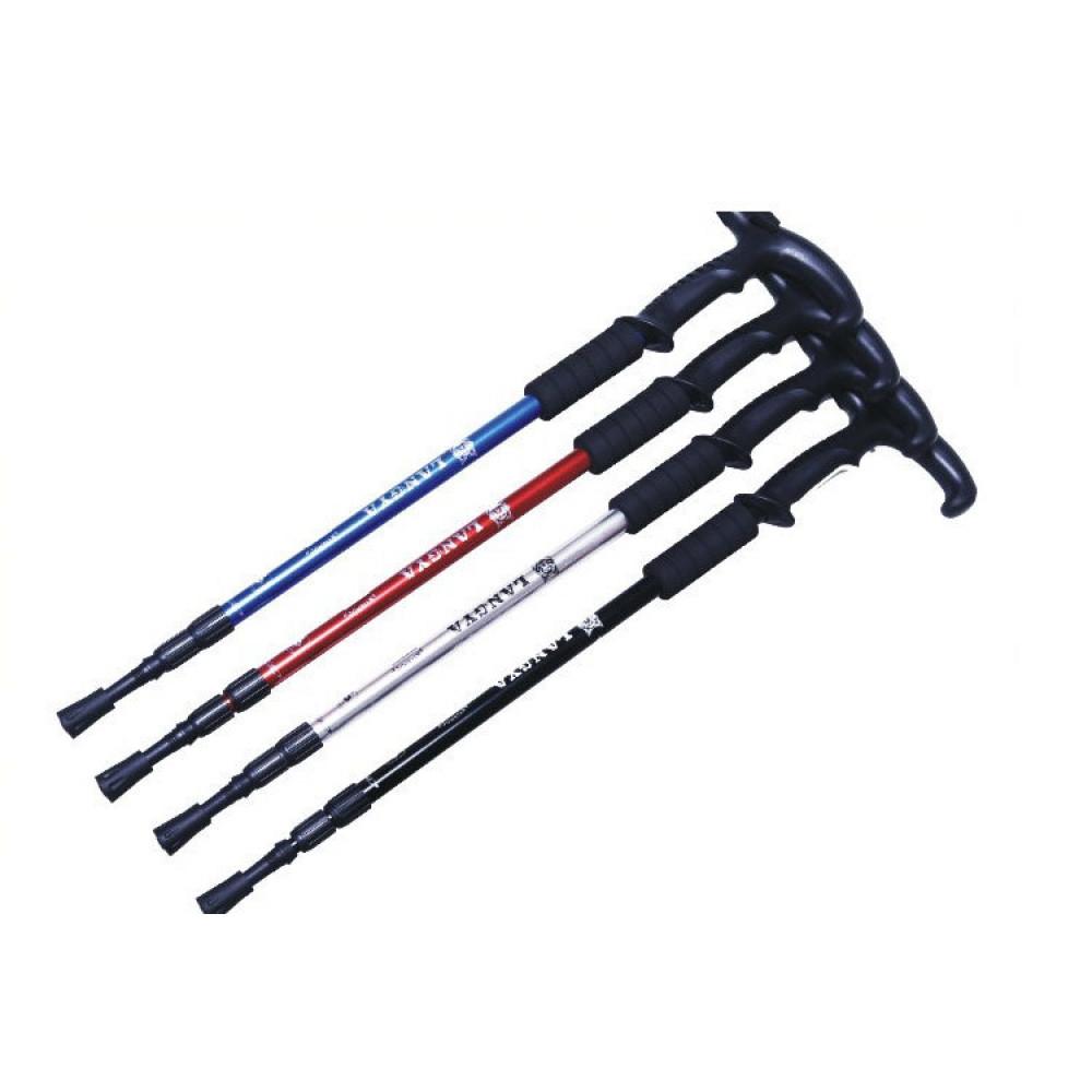 Nordic style walking stick