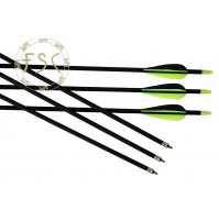 Archery arrows set 10 pcs
