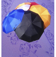 Umbrella with flowers that appear during rain