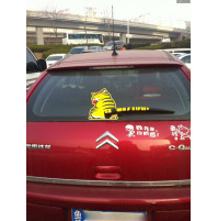 3D sticker for car