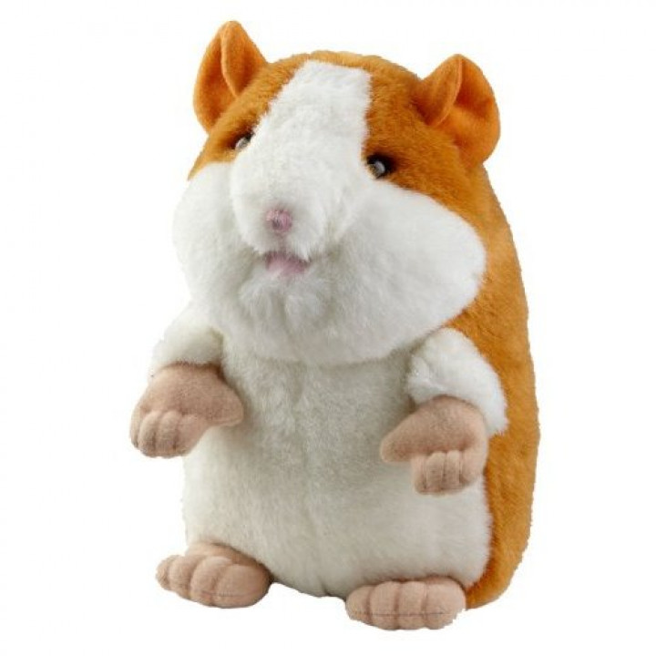Talking hamster that repeats phrases