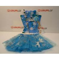 Princess Elsa's set