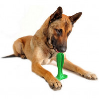 Chewing toy for dogs - cleans teeth and massages gums