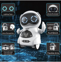 Haite Mini Robot, Pocket Robot for Kids with Interactive Dialogue Conversation, Voice Recognition, Chat Record, Singing& Dancing, Speech Recognition, Electric Small Robot Toy